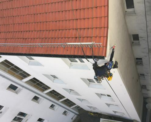 Spechtlochreparatur durch Kletterer